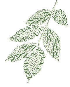 leaf_announcement-green-leaf.jpg